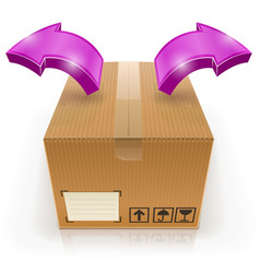 closed box with arrow outside vector image
