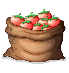 A sack of tomatoes vector