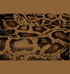 python - abstract pattern vector image