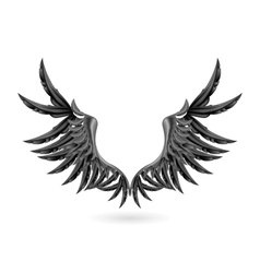 Black wings vector image