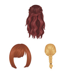 Female hairstyle cartoon icons in set collection vector