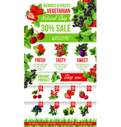 poster of fresh garden berries market sale vector image