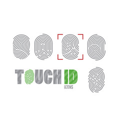 touch id fingerprint scanning identification vector image