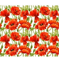 Big seamless pattern of red poppies realistic vector image