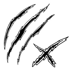 Dragon or monster claws vector