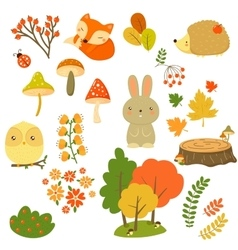 Autumn Forest Plants and Animals vector