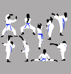 karate girls train vector image