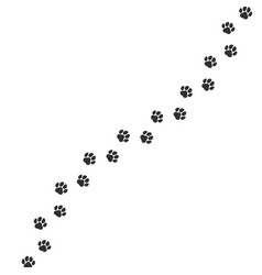 Paw print trail on white background cat or dog vector
