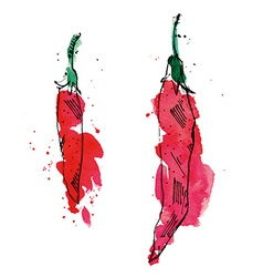 Watercolor of peppers vector image