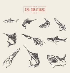 set realistic sea creatures drawn sketch vector image vector image