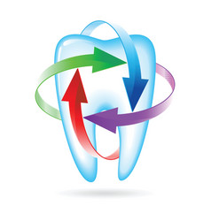 fluoride tooth protection vector image vector image