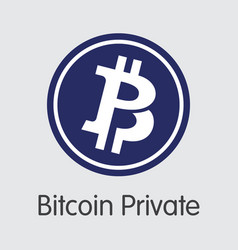 Bitcoin private crypto currency btcp coin vector