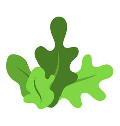 park bush icon isometric style vector image