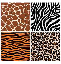 zebra giraffe and leopard patterns vector image