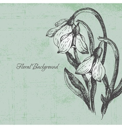 Floral background with snowdrop in retro style vector image vector image