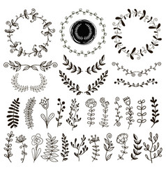A set of hand-drawn plants vector