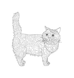 anti stress coloring book object of a cat vector image