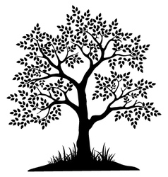 black tree silhouette for your design vector image vector image
