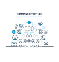 Command structure business hierarchy teamwork vector