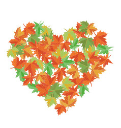 maple leaves in the shape of heart vector image