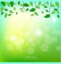 natural green background design vector image
