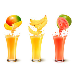 Set of fruit juice splash in a glass mango vector