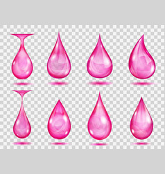 transparent pink drops vector image