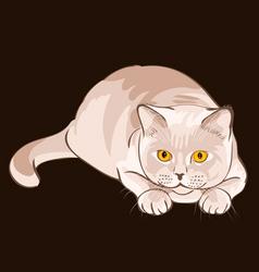 british shorthair lilac cat sits in ambush vector image vector image