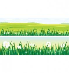 summer panorama vector image