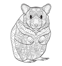 rodent hamster coloring for adults vector image vector image