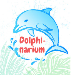 ink hand drawn dolphin vector image