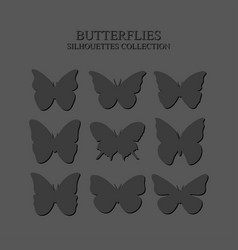gray silhouettes of butterflies on a gray vector image