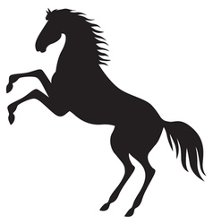 Horse hold vector