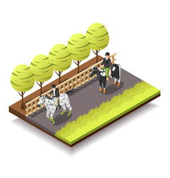Horse riding isometric composition vector