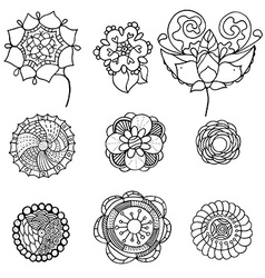 monochrome doodle flowers and leafs vector image