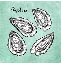 Oysters set on old paper vector