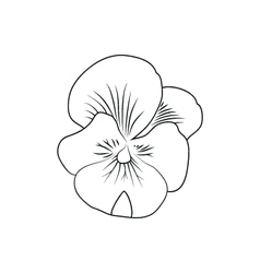 Pansy flower simple black lined icon on white vector