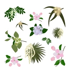 Set of wild flowers vector