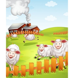 Sheeps in the farm vector