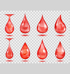 transparent red drops vector image