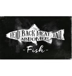 fish cutting scheme chalk vector image vector image