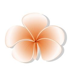 A fresh five-petal flower vector