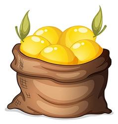 A sack of lemon vector image