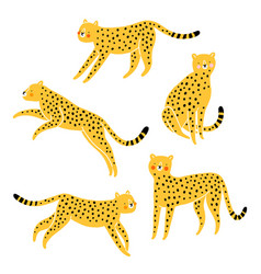 cute cheetahs cartoon set vector image