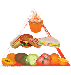 Food pyramid vector