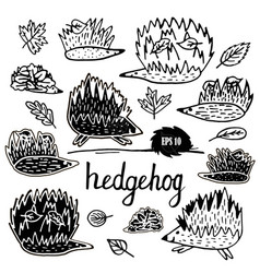 hedgehog set hand drawn figures vector image