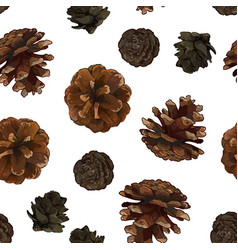 Pine cones seamless pattern isolated on white vector