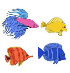 Set color contour different tropical fish fish vector