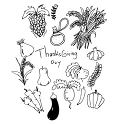 Thanksgiving vegetable in doodle vector image