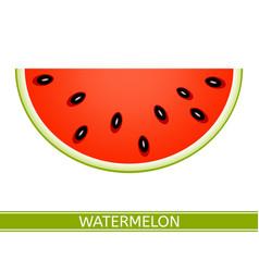watermelon slice icon vector image